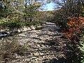 鳥居川上流.jpg