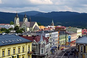 Town panorama with the Cathedral and the Carpathian Mountains in the background.