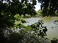 07976jfPampanga River banks Candelaria Boats Fish Delta Bulacan Roadsfvf 09.JPG