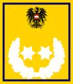1. Vize- Präsident - ÖLRG.png