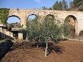 13 Pont de les Femades (aqüeducte romà), al Pont d'Armentera.jpg