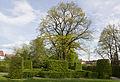 15. Fotoworkshop Nürnberg Hummelsteiner Schlosspark Heckengarten (MGK15834).jpg