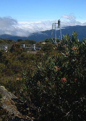 Cerro de la Muerte