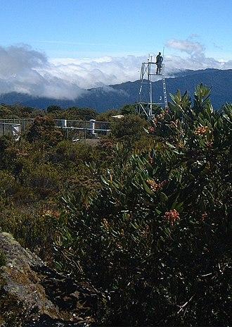 Cerro de la Muerte - Image: 150cerrodelamuerte