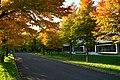 151010 Hokkaido University Japan08s3.jpg