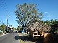 1598Santo Niño Paombong Malolos City Bulacan 38.jpg