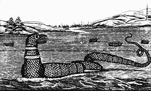1817 in the United States - Image: 1817 Gloucester sea serpent