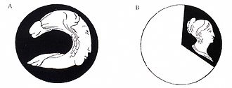 Anorthoscope - The anamorphic disc image (A) and the perceived image when spun (B) as illustrated in Correspondance Mathématique et Physique - Tome VI (1830)