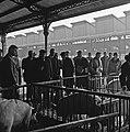 1958 Concours général de carcasses chez Géo Cliché Jean Joseph Weber-21.jpg