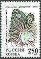 1994. Марка России 0148 hi.jpg