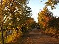 2011-10-26-174031 49,412599, 8,665415.JPG - panoramio.jpg