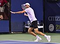 2013 US Open (Tennis) - Ivo Karlovic (9648763082).jpg