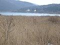 20150219 115 Wienerwaldsee (Large) (16394688690).jpg