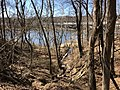 2018-03-18 12 13 38 View down a small stream where it joins the Occoquan River within Occoquan Regional Park in Laurel Hill, Fairfax County, Virginia.jpg