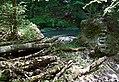 20180514245DR Hohnstein Polenztal Sächsische Schweiz.jpg