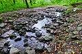2019-09-28 Hike Stinderbachtal. Reader-14.jpg