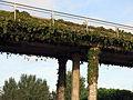 237 Pont sobre la C-245 a l'entrada sud de Gavà.JPG