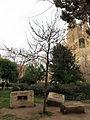 281 Als donants d'òrgans i teixits, pl. Sagrada Família.JPG