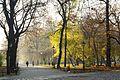 6995vik Planty krakowskie. Foto Barbara Maliszewska.jpg