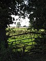 A very bent field gate - geograph.org.uk - 982908.jpg