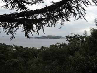 Sedef Island - A view of Sedef Adası from Büyükada.