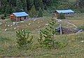 Abandoned log cabins, Independence, CO.jpg