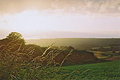 Abinger Common Fields.jpg