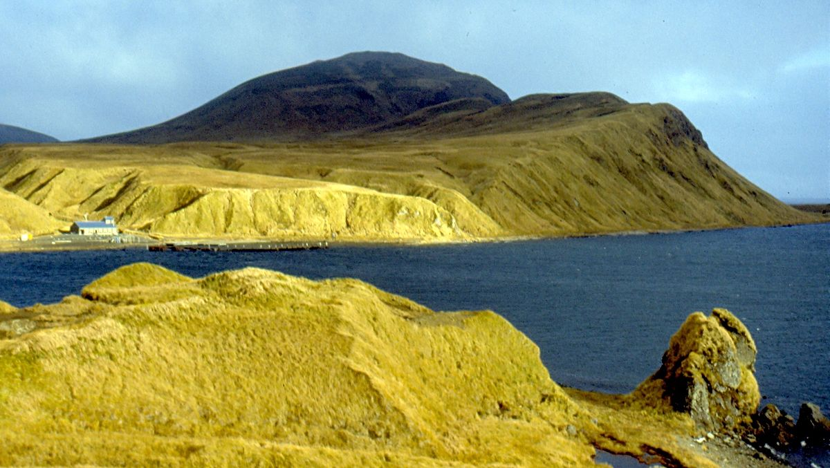 Isla Adak - Wikipedia, la enciclopedia libre