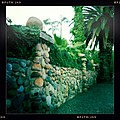 Adams Avenue - Original Stone Wall of Mission Cliff Gardens in University Heights - San Diego, CA.jpg