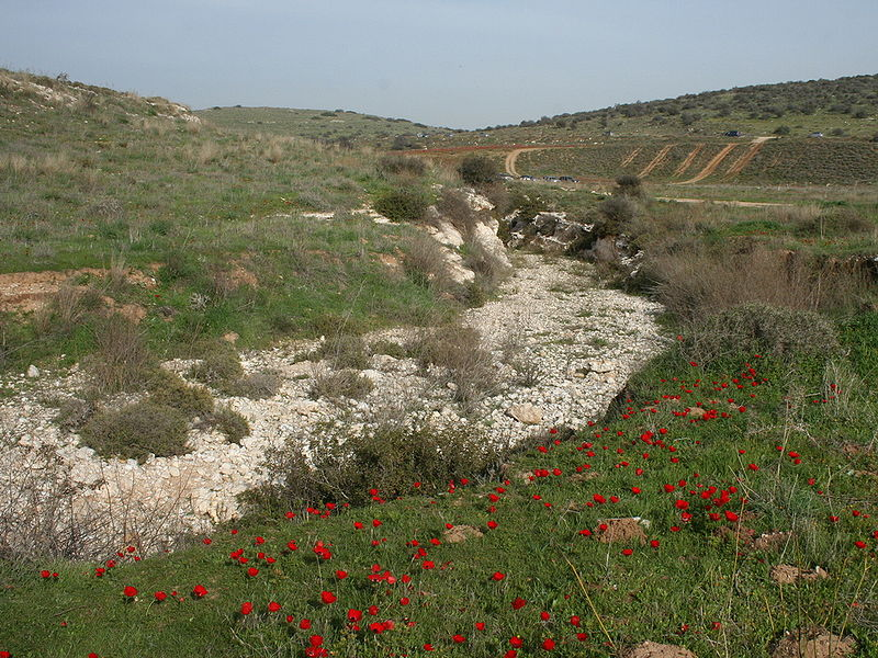 File:Adurayim river bed.jpg