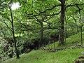 Afon Mynach from the Glan y Mynach path - geograph.org.uk - 506576.jpg