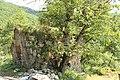Agara monastery (37).jpg