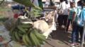 Agri en Foodbeurs te Moengo, 2018 - 04.png