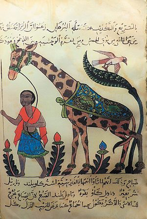 Al-Jahiz - A giraffe from Kitāb al-ḥayawān (Book of the Animals) by the 9th century Arab naturalist Al-Jahiz.