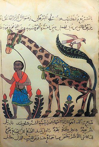 Al-Jahiz - A giraffe from Kitāb al-ḥayawān (Book of the Animals) by the 9th century Arab naturalist Al-Jahiz.