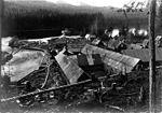 Alaska Packers Assoc Fortmann Hatchery, Loring, Alaska, nd (COBB 72).jpeg