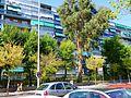 Alcorcón 13.jpg