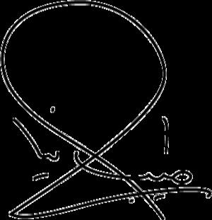 Ali Tayebnia - Image: Ali Tayebnia signature