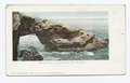 Alligator Head, La Jolla, San Diego, Calif (NYPL b12647398-62651).tiff