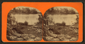 Alligator basking on river banks, from Robert N. Dennis collection of stereoscopic views.png