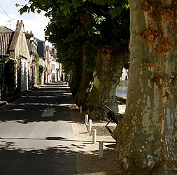 Along the canal in Montargis.jpg