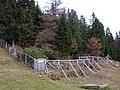 Alpenpflanzengarten im Herbst.jpg