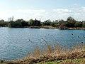 Alton Water from near Tattingstone White Horse - geograph.org.uk - 362747.jpg