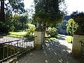 Angers, L'arboretum - 3.JPG