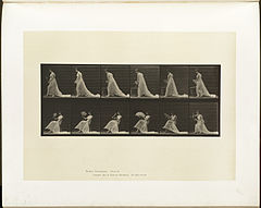 Animal locomotion. Plate 242 (Boston Public Library).jpg