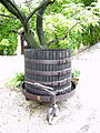 Antique wine press.jpg