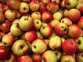 apfel james grieve apples