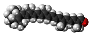 Space-filling model of the apocarotenal molecule