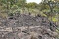 Araguainha - State of Mato Grosso, Brazil - panoramio (674).jpg