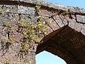 Arch (2195203351).jpg